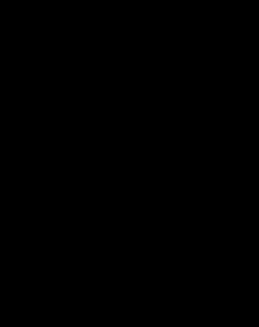 Siphon mit horizontalem Ablauf, aus Edelstahl